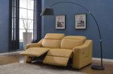 Софа силы самомоднейшей живущий мебели комнаты реальная кожаный