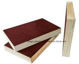 واجه [هيغقوليتي], فينوليّ غراءة فيلم خشب رقائقيّ لأنّ بناء إستعمال