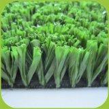 Populäres Feld um die Welt mit künstlichem Gras