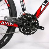 Bici de montaña adulta de la fibra del carbón para el hombre