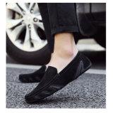 Schoenen van Doug van de Schoenen van de Schoenen van Zweed van de Mensen van de manier de Toevallige (FTS1019-35)