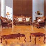 Sofà di cuoio classico per la mobilia del salone (301)