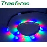 Bande LED lumière DMX512 12V d'éclairage complet de couleurs