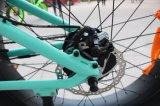 Nueva bicicleta de la grasa de 4.8 pulgadas 2018
