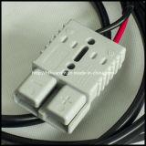EV intelligentes Ladegerät 6V 12V 24V für Motorrad-Roller