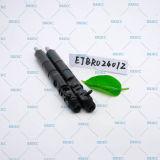 Injecteurs courants de longeron d'Ejbr Ejbr0 2401z Delphes d'injecteur d'Ejb R02401z d'injecteur d'Ejbr02401z Delphes pour KIA