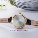 Ремешок из натуральной кожи для изготовителей оборудования дамы кварцевые часы, Wist Леди смотреть (WY-17031A)
