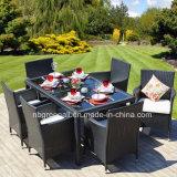 Tabelle esterne e presidenze della mobilia del patio del giardino che pranzano insieme