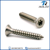 18-8/304/316 Torx de cabeza plana de acero inoxidable tornillo autorroscante