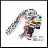 Pet Supply Leather Pet Dog Cat Training Collar
