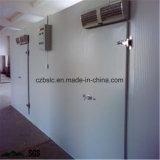 Le congélateur, une chambre froide, Cold Storage, chiller