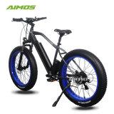 AMS-Tde-08 Fat Draws Mountain Electric Bike 1000W