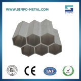 Extrusion profiles en aluminium pour la construction/décoration/industrielles