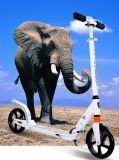 大人、最大負荷120kgのための高品質の2車輪の蹴りのスクーター