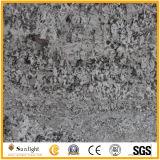 De populaire Plakken van het Graniet van de Kleur van Bianco Antico Zilveren voor Tegels, Countertops