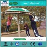 Matériel extérieur commercial de cour de jeu de parc d'attractions pour des enfants