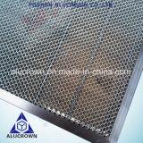 Âme en nid d'abeilles de fer avec le bâti en aluminium pour des panneaux de nid d'abeilles de machine de laser