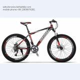 Bici de montaña barata del acero de carbón de la alta calidad