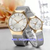 El reloj de manera modifica los relojes para requisitos particulares ocasionales (WY-015GD)