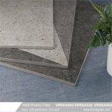 Los materiales de construcción dentro y fuera de baldosa cerámica rústica (VRR6A066, 600x600mm)