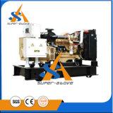 Профессиональный промышленный генератор дизеля портативная пишущая машинка 15kVA