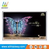 Monitor do LCD do frame aberto de 18.5 polegadas com definição 1366X768 do 16:9 (MW-181MF)