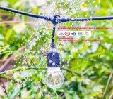 LED-Girlande-Weinlese-im Freien Handelspartei-Zeichenkette-Lichter