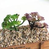 Новый стиль тропическими растениями искусственные цветы Succulents