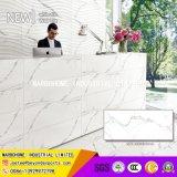 300*800mmの建築材料のカラーラの白い一見の台所浴室の磁器の陶磁器の壁のタイル