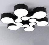 LEIDEN van het Plafond van het huis Decoratieve Moderne BinnenLicht
