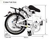 Come può questa E-Bici multifunzionale pieghevole rendere il vostro scatto facile