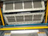 8 Стороны поворотный поддон для яиц бумагоделательной машины цена