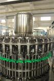 De Lijn van de Machine van het Flessenvullen van de Drank van het Sap van de Banaan van de Reeks van Rcgf