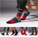 Bunter Streifen-Form-Entwurf für Mann-Kleid-Socke