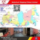 Porte à porte de l'Agent d'expédition de la Chine vers la Russie Sea Road Air Freight