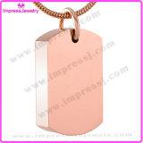 La collana Pendant di cane dell'urna d'acciaio in bianco della modifica per l'animale domestico incenerisce i monili di cremazione del supporto del Keepsake (IJD8416)