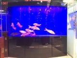 Serbatoio di pesci acrilico di disegno dell'OEM Beatuful