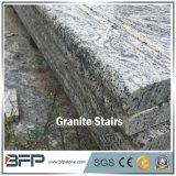 G441 het Witte Graniet van Juparana dat met Groene Ader voor de Tegel van de Vloer en van de Trede wordt betreden