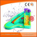 Diapositiva inflable de la diversión con la piscina para el verano (T11-308)