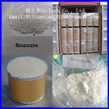분석실험 99.9% 두껍게 또는 얇은 Benzocaine 분말