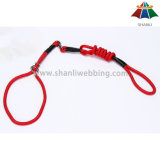 Hot-Sale 10mm couleur solide de haute qualité en polyester/nylon Selve-Adjusting laisse et collier