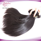 Silky Soft Hair Humano 100% Malaio Straight Virgin Hair