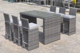 Garden Wicker Outdoor Patio Rattan Florance Bar Set Furniture (J691)