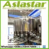Vollautomatische Haustier-Flaschen-reine Mineralwasser-Plomben-Maschinerie