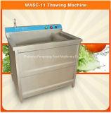 Wasc-11 Cmmercial die Vlees /Vegetable /Fruit Machine, de Bevroren Machine van Thawy van het Varkensvlees Beaf, Wasmachine ontdooien