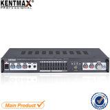 15W 2 Versterker van de Equaliser van Kanalen de Stereo (BT-7301)
