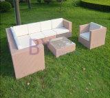 Mobília ao ar livre ajustada do jardim do sofá do sofá do Rattan do PE