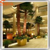 Palm van de Glasvezel van de Installatie van de Decoratie van het hotel de Plastic Kunstmatige
