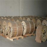 draad van het Staal van het Koper van de Kabel CCS van 0.10mm4.0mm de Coaxiale Beklede
