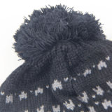 冬のPomponの帽子、編むウールの帽子、高品質は女性のための球の上が付いている帽子を編んだ